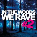 Live Set @ In The Wood We Rave 8-25-12