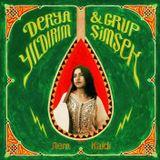 I dream of Piranhas #15 w/ anatolian psych-pop lady Derya Yildirim