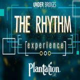 Punk Mbedzi - Live at  TheRhythmExperience from Plantation Cafe, Midrand [BestBeatsTv]