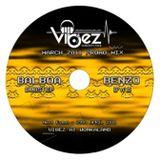 Vibez Promo Mix March 2011 - DJ Balboa (Dubstep Vibez)
