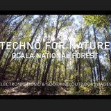Techno for Nature Ocala National Forest #deephouse #techno #techhouse
