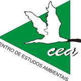 Comentário CEA Contraponto 8.6.2015