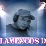 FLAMENCOSDJ -ROMEO SANTOS VOL.2 Y 1 (Lo nuevo)