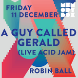 Robin Ball Live at Bussey Building for Memory Box Party, 11-12-15