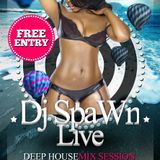 deep house session 01/2k15 - djspawn