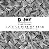 LOTS OF BITS OF STAR - TOYDRUM - KAIANDSUNNY