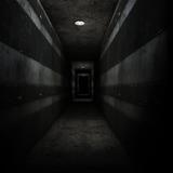 *in the dark shadows*