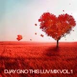 Djay Gno This Luv Mix Vol.1