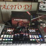 Techno-Reggae, Techno-Dance , Euro-Dance