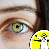 Senses Month: The Science of Sight