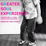 【OMOIDE- 72】Greater Soul Experience (MIXED BY トロ・ツァキ)
