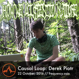 Causal Loop - Derek Piotr - 22nd October, 2016