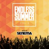 ENDLESS SUMMER | VOL.2
