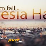 Inner Ornament Guest Mix -Amnesia Haze 017[August 14 2014]on Pure.fm
