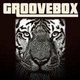 Positive Vibrations, GROOVEBOX Special 17.12.2012