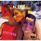 DEEP HOUSE SPEKTRUM VOL 1  MIXED  BY DJ KUBIK