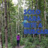 No 8 SÓLO PARA IRTE A BUSCAR / RADIO MIXANTEÑA