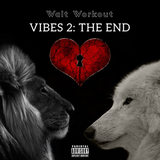 Vibes 2 The End