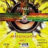 Dj Belly - Afro Evolution Vol. 1 - CD04