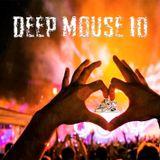 Deep MousE 10