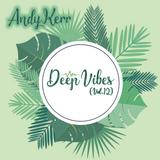 Andy Kerr - Deep Vibes (Vol.12) [US Chart Remix Edition]