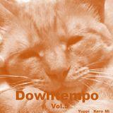 Cafe Gatto / Downtempo Vol.5