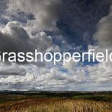 Slaven Locust - Grasshoperfield 200412 set