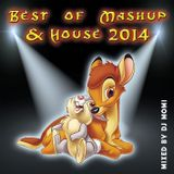 Best of MashUp & House 2014 - mixed by DJ Momi