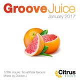 Groove Juice Grapefruit - January 2017