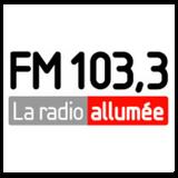 DJ Work Hits - Le Party Plus du FM103.3 La Radio Allumée Show No 2 2016-10-14