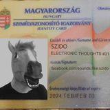 Szido - Electronic Thoughts #031