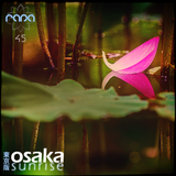 Osaka Sunrise 45
