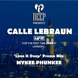 'Love It Deep' Promo Mix  (Mixed by Mykee Phunkee)