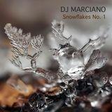 Snowflakes No. 1