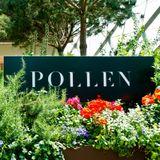 Ed Scutt - Pollen