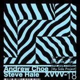 two years of msp*_  // Steve Hale & Andrew Choe // XVVV-18