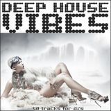 dj Repläy - Live @ Home (Deep-House Set) 29.01.2013