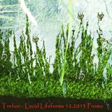 Trebor - Lucid Lifeforms 12.2013