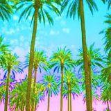 Funky Beach Disco Vibes