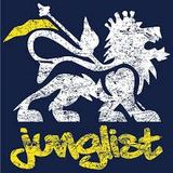 Junglist 4 Life Mix 3 (Christmas Special 2014)