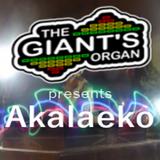 Introducing the residents: Akalaeko (Techno)