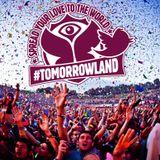 Dave Clarke @ Tomorrowland 2013 (De Schorre - Belgium) (28-07-2013)