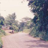 Jah Love Muzik @ Santa Cruz Briggy+Ilawi  Covenana Hinds 1981  (DB cd #014)  Dave Brown Collection
