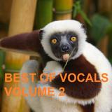 Winter Mix 91 - Best of Vocals Vol. 2