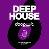 Deep House Label Showcase: DeepWit Recordings #6