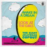 Press Record & Play on WRFI, 8.4.18 -- Sunshine Pop
