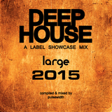 Deep House Label Showcase: Best of Large Music 2015