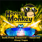 Back From Tomorrow - Third Set' Crazy Vegas - May 2013 - mixed by Horny Monkey
