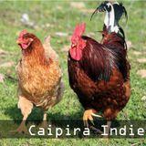 Caipira Indie - jun|2014