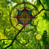 "Dj Solnce - ""Anatman Private Party 2018"" Goa, PsyProgressive & Psychedelic Trance Mix"